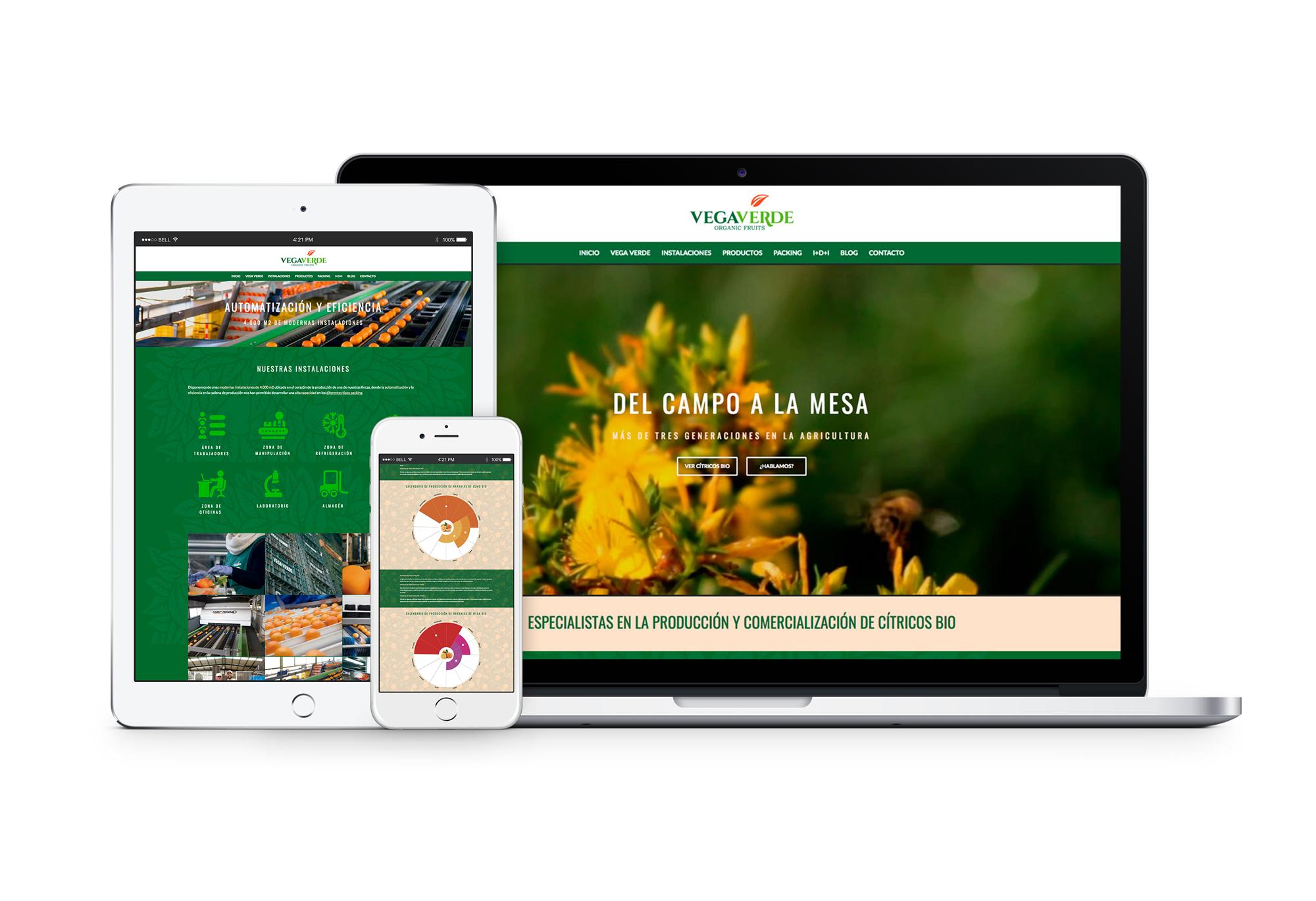 Vegaverde Web Fans Marketing Málaga